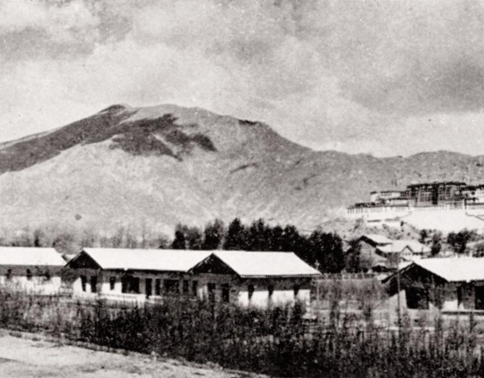14_chinese_housing