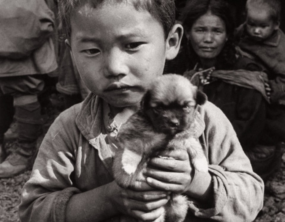refugee_child_with_dog